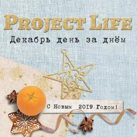 Project Life. Сказочный декабрь