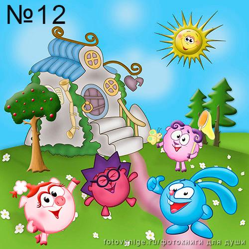 №12-(1)