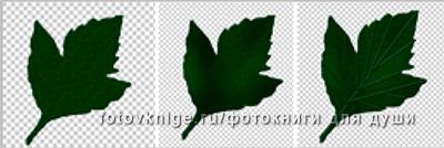 jen_-yurko_-designs29