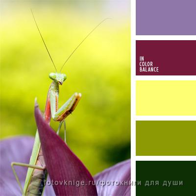 jen_-yurko_-designs4